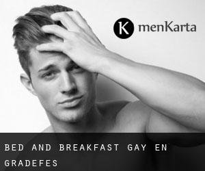 Bed and Breakfast Gay en Gradefes