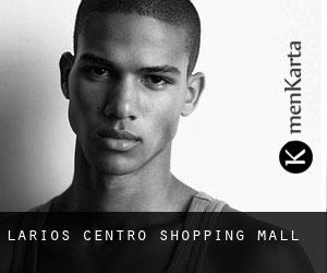 Larios Centro Shopping Mall
